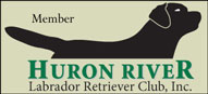 Huron River Labrador Retriever Club